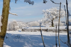 winter-view_0 (1)